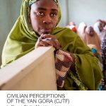 thumbnail of 2018.06.CJTF Report.Africa Program.Web.